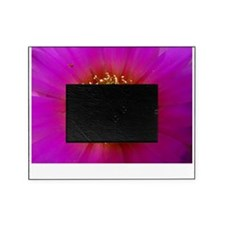 cactus Picture Frame