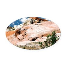 Valley of Fire State Park, Nevada, Oval Car Magnet