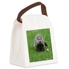 GrHog7.5x9.5 Canvas Lunch Bag