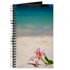 Beach Lily Journal