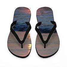 z1 Flip Flops