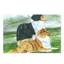 rough collie pair tri Postcards (Package of 8)