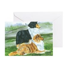 rough collie pair tri Greeting Card