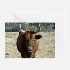 texas.bull.WE_THOMAS Greeting Card