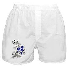 Ipswich Football Horse Boxer Shorts