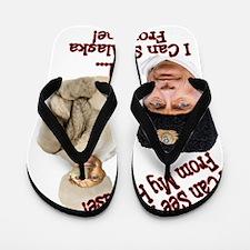 Putin and Palin Flip Flops