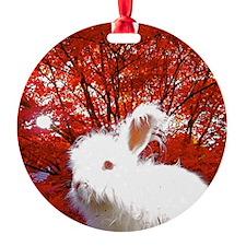 octnew Ornament
