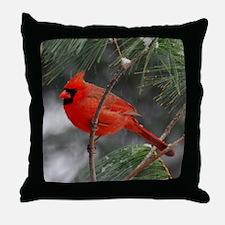 Male Cardinal 02-02-10 340 Throw Pillow