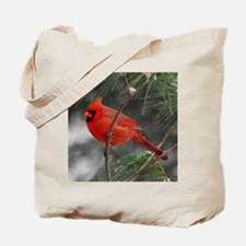 Male Cardinal 02-02-10 340 Tote Bag