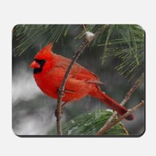 Male Cardinal 02-02-10 340 Mousepad