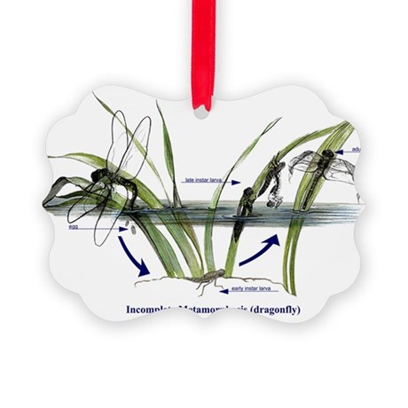 Incomplete Metamorphosis (Dragonf Picture Ornament