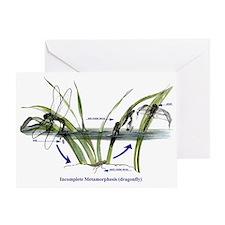 Incomplete Metamorphosis (Dragonfly  Greeting Card