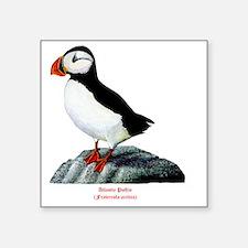 """Atlantic Puffin Square Sticker 3"""" x 3"""""""