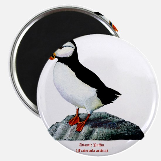 Atlantic Puffin Magnet