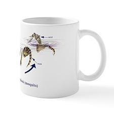 Complete Metamorphosis (Mosquito Life C Mug