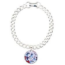 2-PB170483 Bracelet