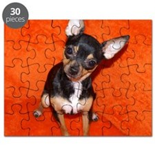 Abbey6-10x10 Puzzle