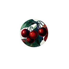 Cherry Ripe Cherries Fruit Retro Vinta Mini Button