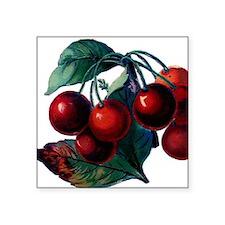 """Cherry Ripe Cherries Fruit  Square Sticker 3"""" x 3"""""""