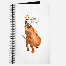 Lets Play Dachshund Dog Journal