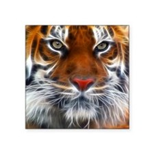 """Indian_Tiger Large Square Sticker 3"""" x 3"""""""