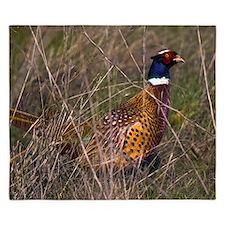 (4) Pheasant  407 King Duvet