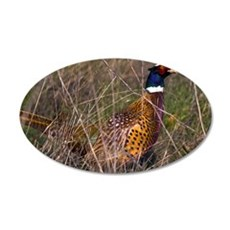 (4) Pheasant  407 35x21 Oval Wall Decal