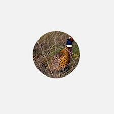 (4) Pheasant  407 Mini Button