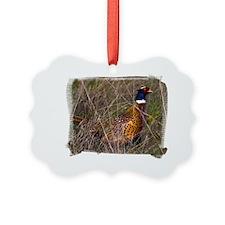 (16) Pheasant  407 Ornament