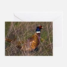 (12) Pheasant  407 Greeting Card