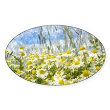 Painted Wild Daisies Decal