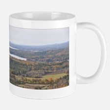 DSC_0126poster Mug
