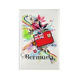 Bermuda 10 Pack