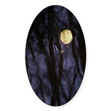 Harvest Moon Reflected - Print Decal
