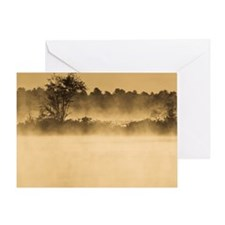 Bog at Dawn - Print Greeting Card