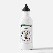 LG WPT Morphology Post Water Bottle
