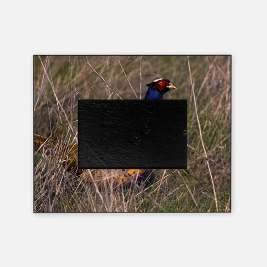 (6) Pheasant  407 Picture Frame