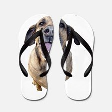 up to the dogs2 Flip Flops