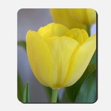 Yellow Tulip Keepsake Box Mousepad