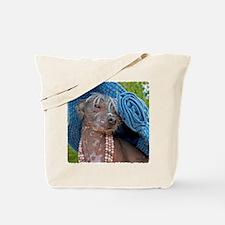 IMG_2944 24x24 coT Tote Bag