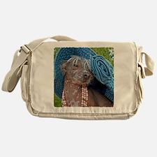IMG_2944 24x24 coT Messenger Bag