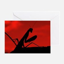 redskymantis Greeting Card
