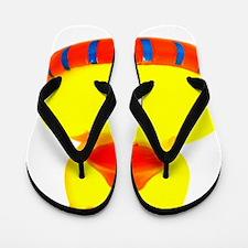 utochka4-krug Flip Flops