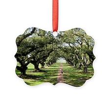 Live Oaks Ornament