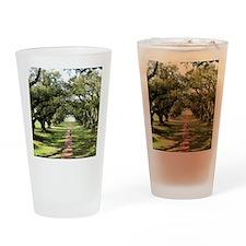 Live Oaks Drinking Glass