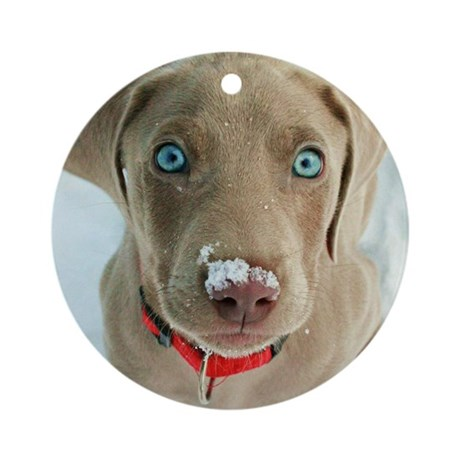 do i have something on my nose Round Ornament