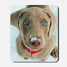 do i have something on my nose Mousepad