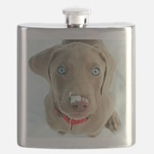 do i have something on my nose Flask