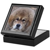 Tibetan mastiffs Keepsake Boxes