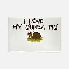 Guinea Pig Love Rectangle Magnet